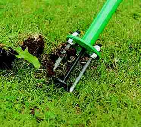 Best Way to Control Weeds in Your Vegetable Garden