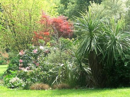 Create Shrub Garden 1 Best Way to Create a Shrub Garden