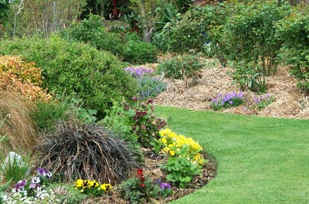 Garden Borders Best Way to Choose Herbs for Your Garden Borders