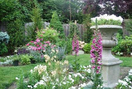 Herbaceous plants 2 Best Way to Color Your Garden with Herbaceous plants