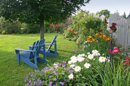 Plant Annuals Garden Best Way to Plant Annuals in the Late Summer Garden