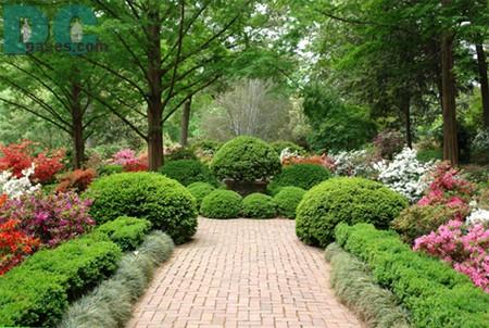 Successful Garden 2 Best Way to Achieve a Successful Garden