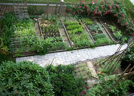 Vegetable Garden Best Way to Control Pests in Your Vegetable Garden
