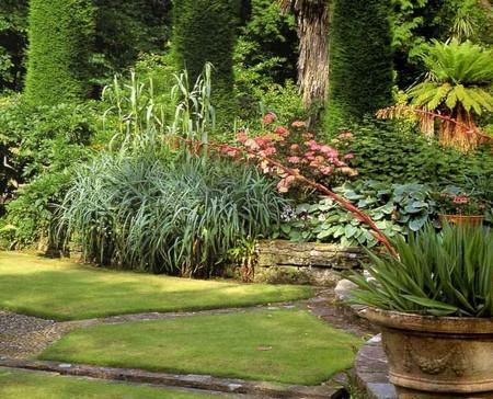 Winds Garden 1 Best Way to Survive Buffeting Winds in Your Garden