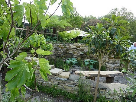Winds Garden 2 Best Way to Survive Buffeting Winds in Your Garden
