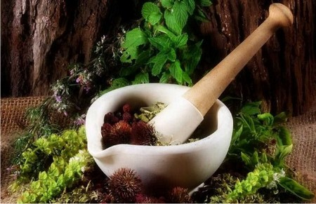 Working Environment with Herbs Best Way to Enhance Your Working Environment with Herbs