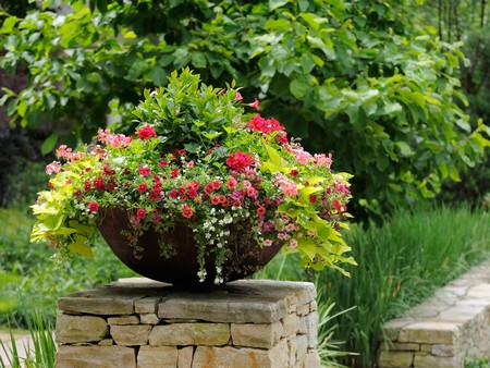 Create Container Garden 2 Best Way to Create a Container Garden