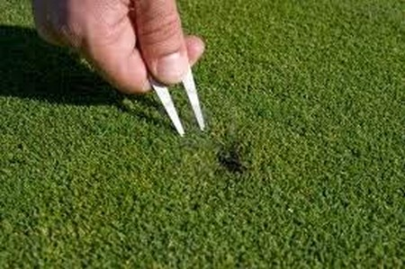 Best Way to Take a Divot in Golf