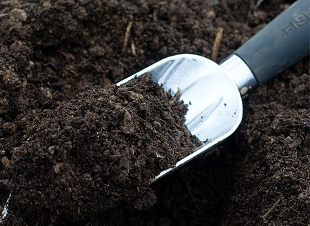 Best Way to Understand the Soil in Your Garden