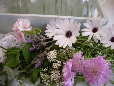 Herbs Flower Arrangements Best Way to Choose Herbs for Flower Arrangements