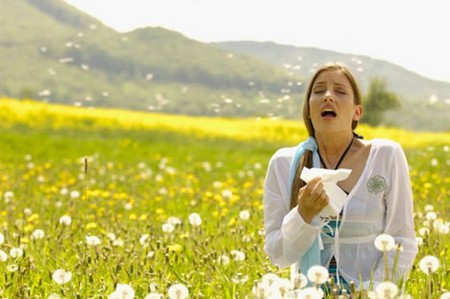 Pollen Allergy 1 Best Way to Understand Pollen Allergy