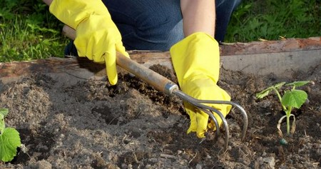 Soil in Small Garden Best Way to Work with the Soil in Small Garden