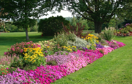 Design Flower Garden 1 Best Way to Design a Flower Garden